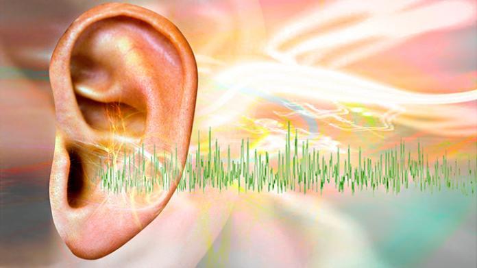 El Tinnitus y el oído