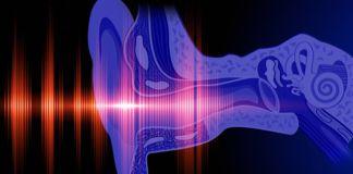 tratamiento del tinnitus